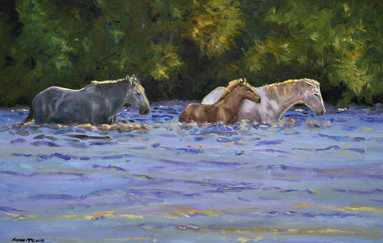 Back Lit Crossing by Karen McLain