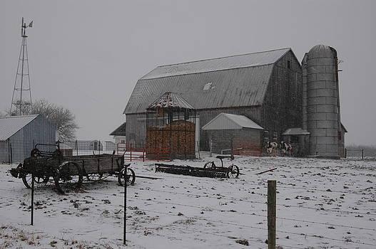 Back on the Farm by Wanda Jesfield