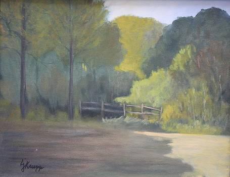 Backyard Beauty by Linda Krupp
