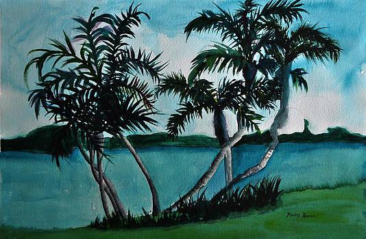 Backyard Palms by Mickey Krause