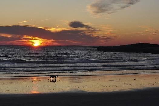 Bailey's Beach by Ryan Louis Maccione