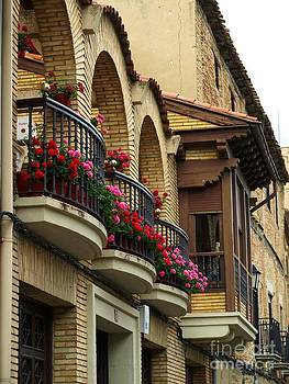Balconies in Olite by Alfredo Rodriguez