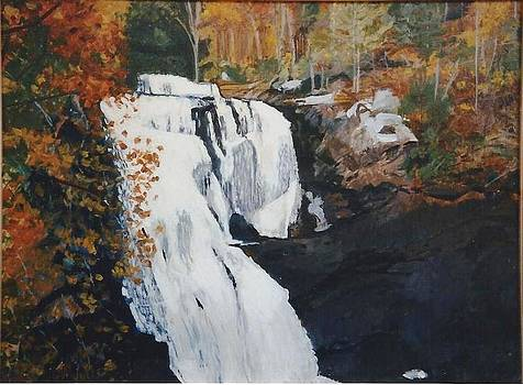 Bald River Falls Tennessee by Terry Forrest