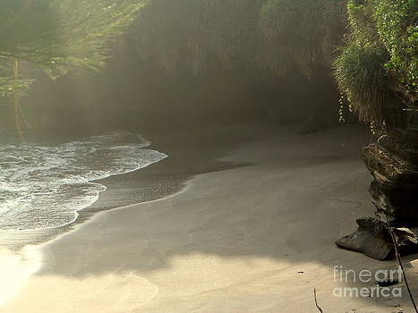 Balinese Beach and Cove by Samantha Mills