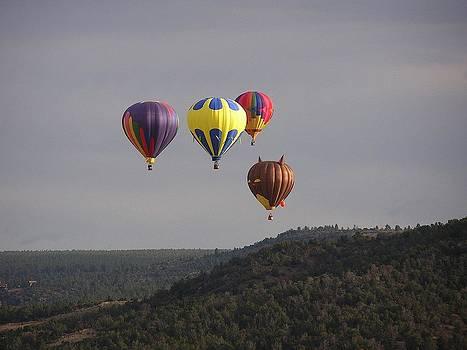 FeVa  Fotos - Balloon Cluster