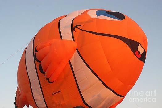 Gary Gingrich Galleries - Balloon-Nemo-7655