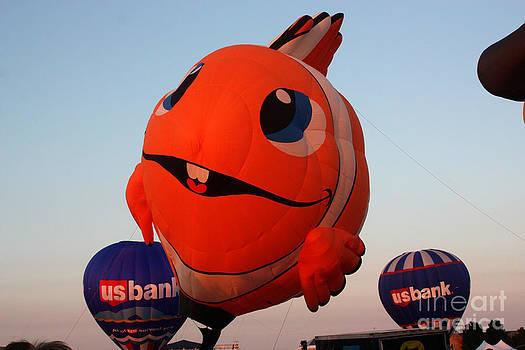 Gary Gingrich Galleries - Balloon-Nemo-7883