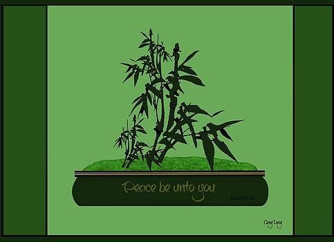 Bamboo bonsai by Greg Long