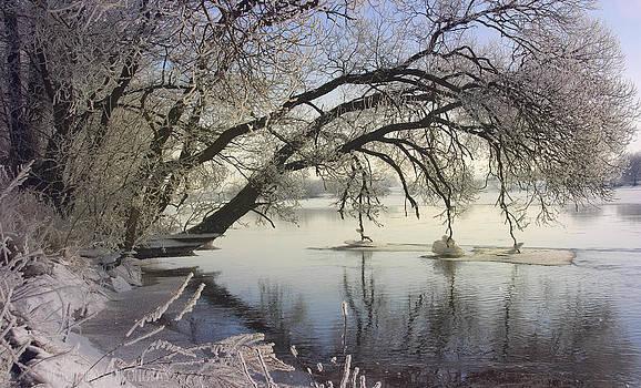 Banks of the river by Vladimiras Nikonovas