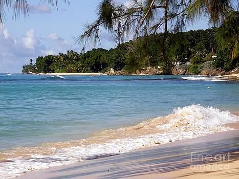 Sophie Vigneault - Barbados Scenery