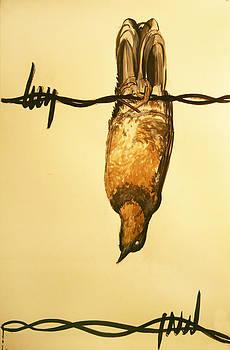 Barbwire bird by Morgan Banks