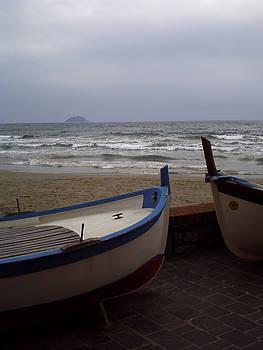 Barche by Niki Mastromonaco
