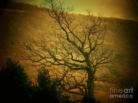 Bare Tree in Winter by Joyce Kimble Smith