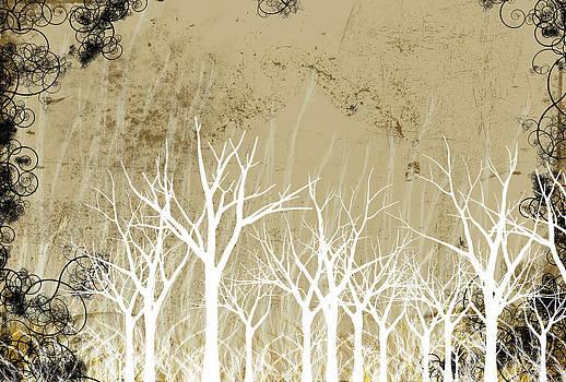 Bare Winter Season Trees by Photos.com