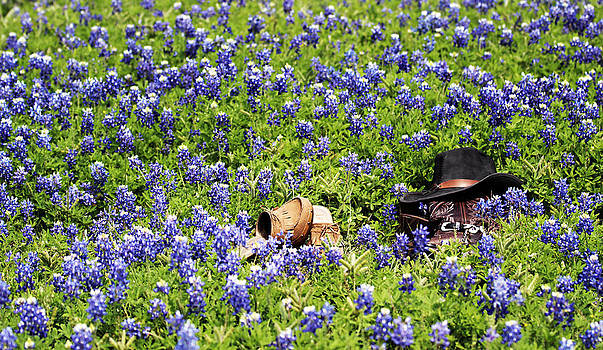 Barefoot In The Bluebonnets by Elizabeth Hart