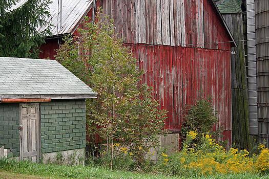Barn Buildings by Frank Morales Jr
