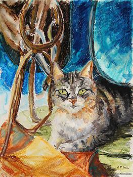 Barn Cat by Barbara Pommerenke