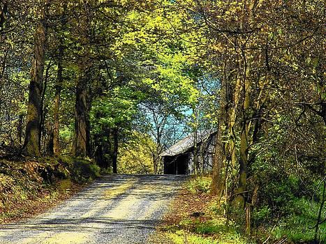 Barn Down the Road by Joyce Kimble Smith