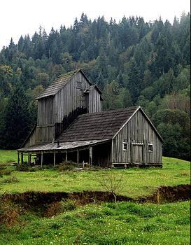 Barn in Oregon 1979 by John Wolf