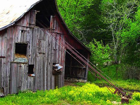 Barn in Rural Missouri by Patricia Erwin