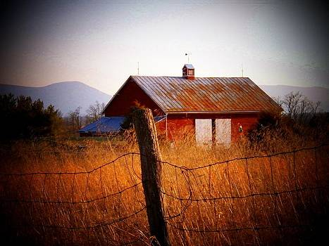 Barn in Wheat by Joyce Kimble Smith