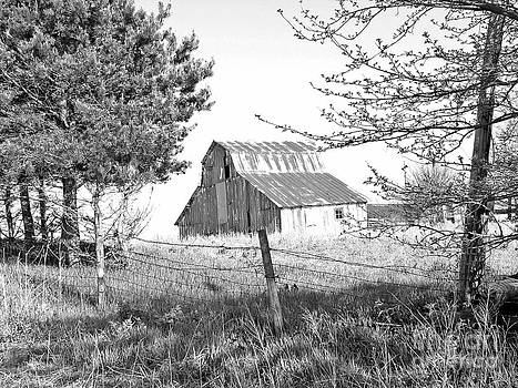 Barn No 1 by Stephany Knight