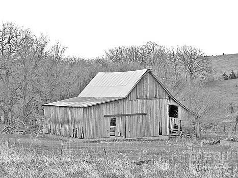 Barn No 2 by Stephany Knight