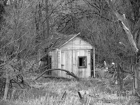 Barn No 3 by Stephany Knight