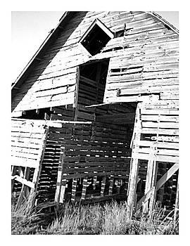 Barn No 4 by Stephany Knight