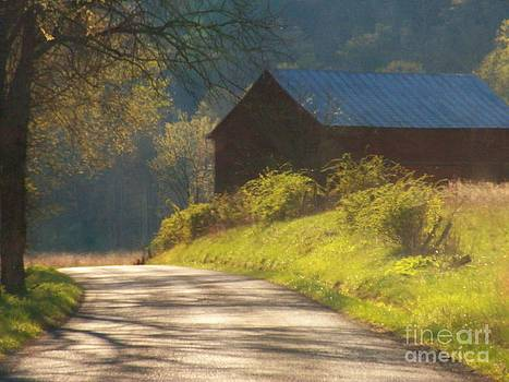 Barn on a Country Road by Joyce Kimble Smith