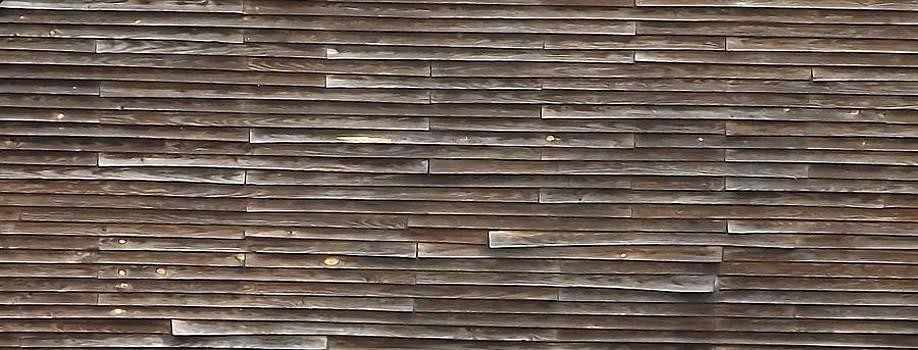 Barn Siding Abstract by Kathy Budd