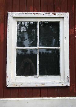 Nina Fosdick - Barn Window