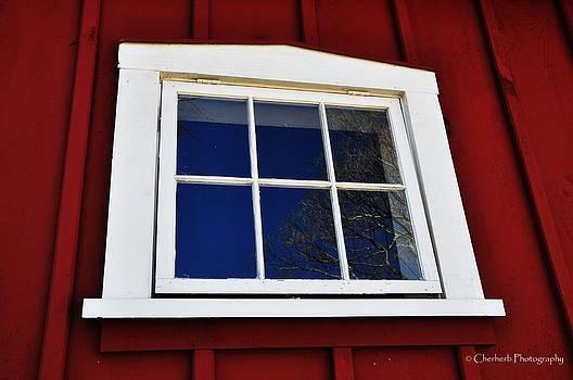 Barn Window Reflection by Cheryllee