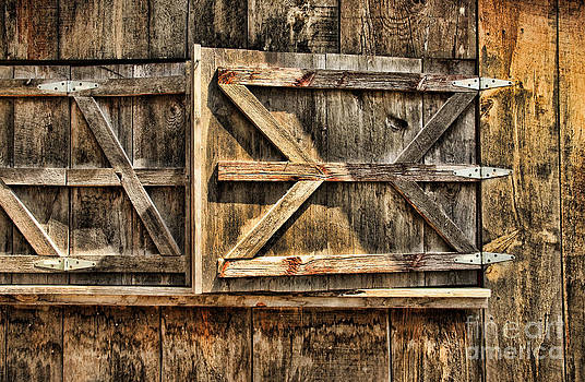 Barn Wood Texture by Joanne Coyle