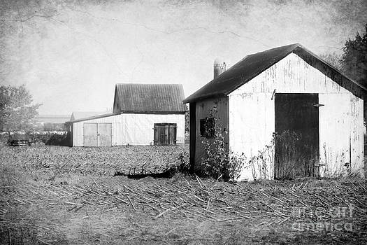Sophie Vigneault - Barns in Black and White
