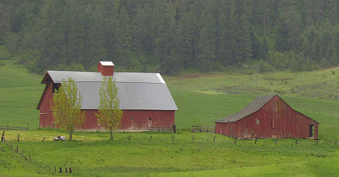 Barns of the Palouse 5 by Tony and Kristi Middleton
