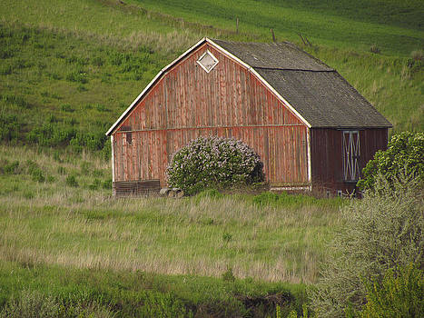 Barns of the Palouse 6 by Tony and Kristi Middleton
