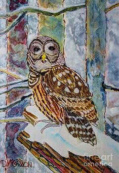 Barred Owl Winter by Donald McGibbon