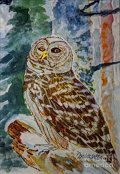Barred Owl Winter Scene by Donald McGibbon