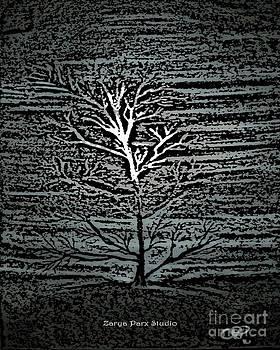 Barren At Twilight by Zarya Parx  Studio