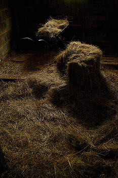 Barrow and Hay by Miguel Capelo