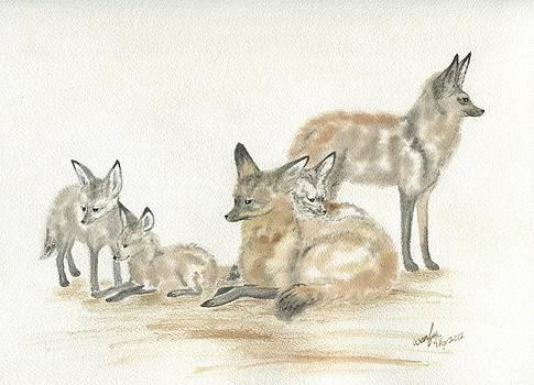 Bat-eared fox family by Wenfei Tong