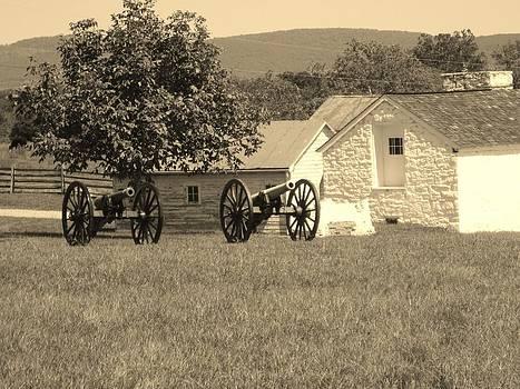 Battlefield on a Farm by Trish Pitts