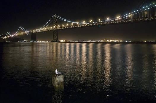 Bay Bridge San Francisco by Rich Beer
