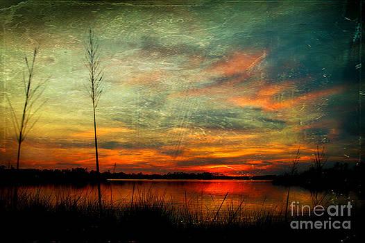 Bayou Colors by Joan McCool