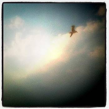 Be Free by Tina Marie