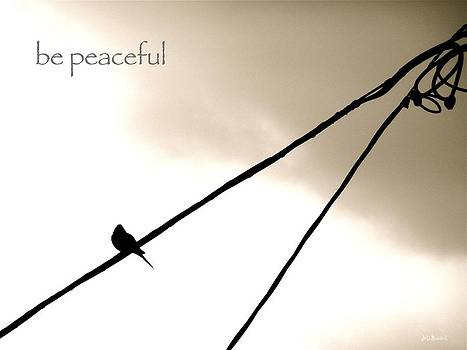Be Peaceful by Brian D Meredith