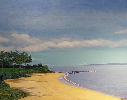 Beach at Maui by Dale Lewis