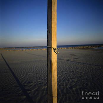 BERNARD JAUBERT - Beach