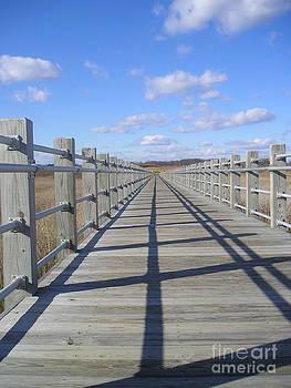 Silvie Kendall - Beach Bridge